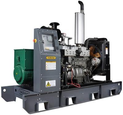 Газовый генератор Gazvolt Standard 66 KTB 21 с АВР