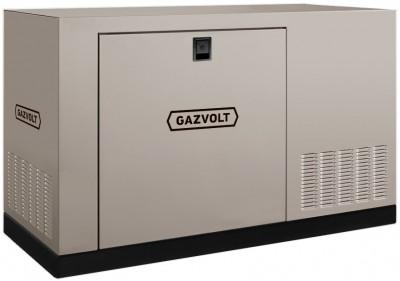 Газовый генератор Gazvolt Standard 46 KT Dnepr 21 с АВР